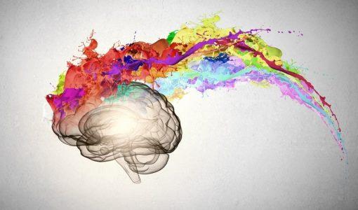 Functions of Dopamine